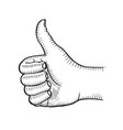 hand showing symbol like vector image