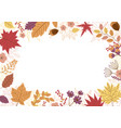 autumn leaves design on white background vector image