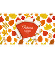 autumn sale banner forest fall leaves with paper vector image