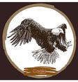 Eagle 11 vector image vector image