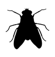 Fly silhouette vector image