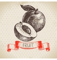 Hand drawn sketch fruit peach Eco food background vector image