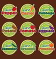 organic food vegetables label vector image vector image