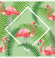 square frame with flamingos and branches leaves vector image vector image