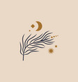tiny floral branch and crescent moon in vector image vector image