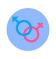 male and female arrow signs icon on blue round vector image