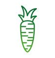 carrot vegetable fresh supermarket food design vector image vector image