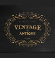 design vintage frame antique label border vector image