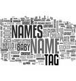 names word cloud concept vector image