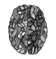 Sketchy Human Brain vector image