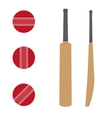 Traditional wood cricket bats and balls vector image vector image