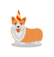 welsh corgi pedigree dog in party hat cute puppy vector image