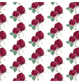 Watercolor Red Rose pattern vector image