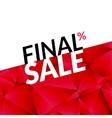 Final sale banner background Promotional vector image