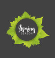 spring season letter and green leaves black gray vector image
