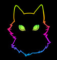 black cat on a multicolored rainbow background vector image vector image