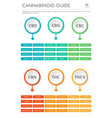 cannabinoid guide vertical business infographic vector image vector image