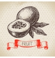 Hand drawn sketch passion fruit Eco food vector image vector image