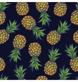 Pineapple seamless background vector image