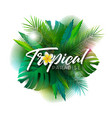 summer tropical paradise vector image vector image