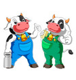 two cow cartoon standing and drinking milk vector image