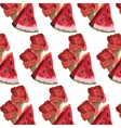 Watermelon slices and ice cream pattern vector image vector image