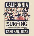 baja california sur surfing company vector image vector image