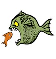 bully fish vector image vector image