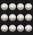 currency coins symbols icons metallic platinum set vector image