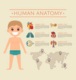 human body anatomy poster with smiling kid