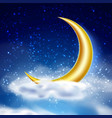 magic night sky with cloud vector image vector image
