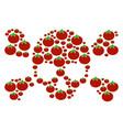 skull crossbones composition of tomato vector image