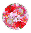tropical flowers in bouquet of sphere shape vector image vector image