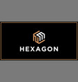 nm hexagon logo design inspiration vector image vector image