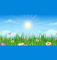 summer country garden landascape vector image