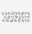 autumn leaves set hand drawn sketch vector image vector image