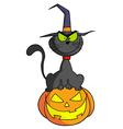 Cartoon Character Halloween Cat On Pumpkin vector image vector image