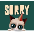 Cute grumpy cat apologize sorry card vector image vector image