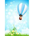 Flowers in the Grass and Hot Air Balloon in the Sk vector image vector image