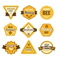 Honey labels set vector image vector image