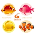 Icon set with tropical fishes - butterfly fish vector image vector image