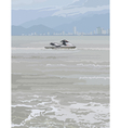 watercraft on a background of gray sea vector image vector image