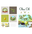 cartoon natural olive infographic template vector image vector image