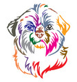 colorful decorative portrait of dog shih tzu vector image vector image