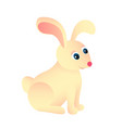 cute sitting rabbit or bunny pet and animal farm vector image vector image