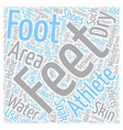 Home Remedies For Athletes Feet text background vector image vector image