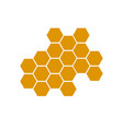 honeycomb bee icon on white background honeycomb vector image vector image