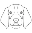 isolated beagle avatar vector image
