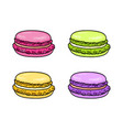 macaroon set french colorful macaron sweet vector image