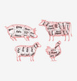 meat cutting scheme butcher shop butchery vector image